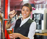 pretty-barmaid-pulling-pint-beer-bar-49044274